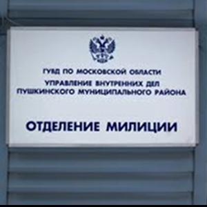 Отделения полиции Седельниково